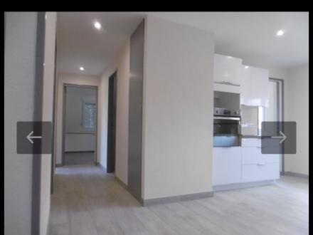 Location Appartement 5 pièces Brumath (67170) - REFAIT A NEUF