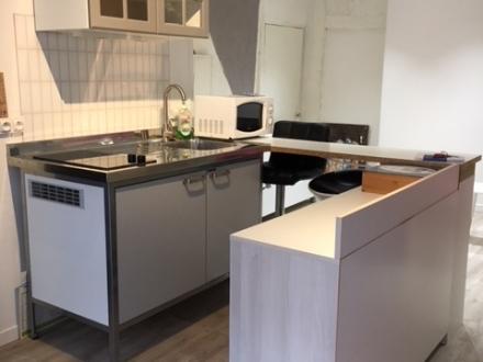 Location Appartement 1 pièces Cosne-Cours-sur-Loire (58200) - centre ville