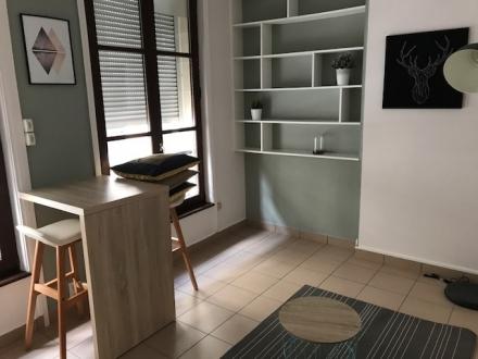 Location Appartement 1 pièces Reims (51100) - CENTRE VILLE