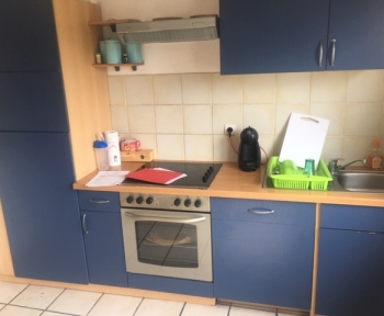 Location Appartement avec terrasse 4 pièces Betschdorf (67660) - 18 rue de l'avenir
