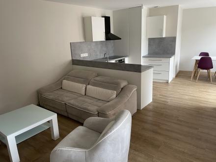 Location Appartement 2 pièces Pfaffenhoffen (67350) - centre ville